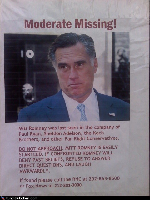 lost pet missing Mitt Romney moderate poster rnc - 6576800000