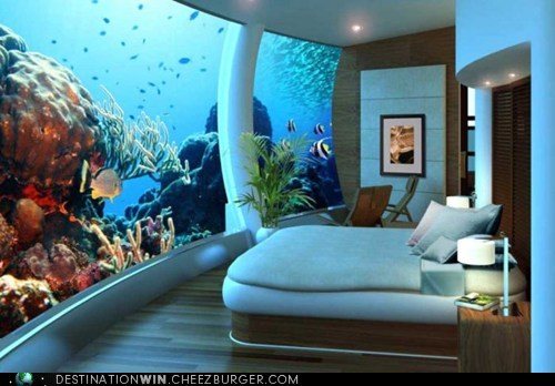 aquarium bed hotel vacation view