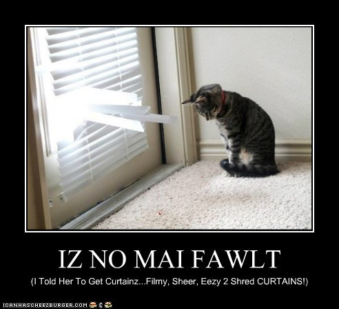 IZ NO MAI FAWLT (I Told Her To Get Curtainz...Filmy, Sheer, Eezy 2 Shred CURTAINS!)