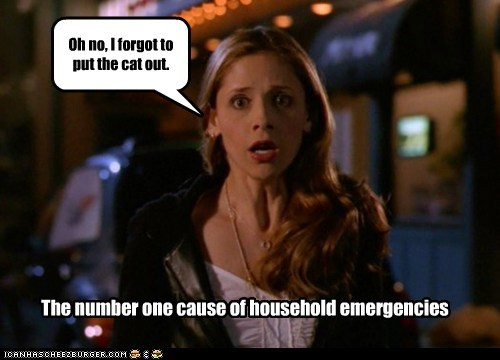 buffy summers Buffy the Vampire Slayer cat cause emergencies Sarah Michelle Gellar