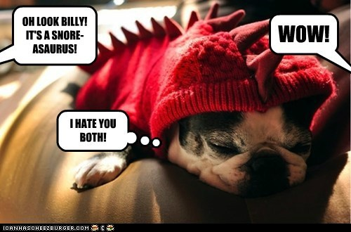 dogs pug costume dinosaur snoring teasing nap - 6577789952