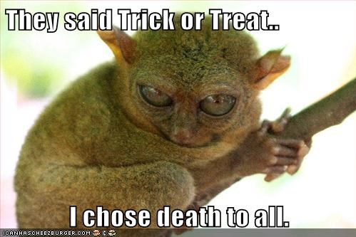 bush baby,choose,Death,evil,trick,trick or treat