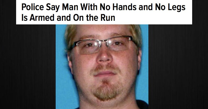Florida man headlines that will make you never want to know anything else about the state