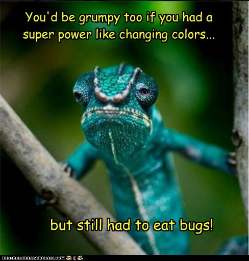 bugs,chameleon,changing colors,eating,grumpy,superpower