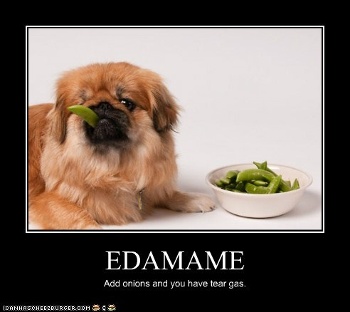 EDAMAME Add onions and you have tear gas.