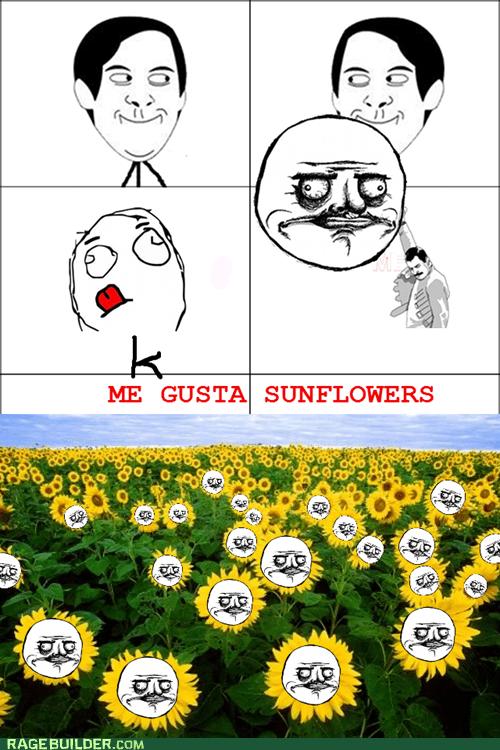 Me gusta Sunflowers