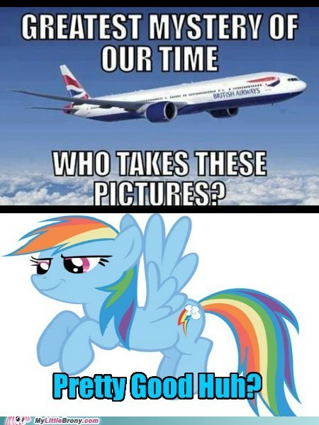 great shot photographer rainbow dash who knew - 6579146752