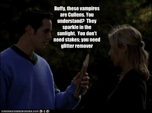 Buffy the Vampire Slayer Sparkle sunlight cullens twilight buffy summers Sarah Michelle Gellar nicholas brendon xander harris