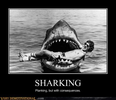 bad idea jaws Planking sharking wtf