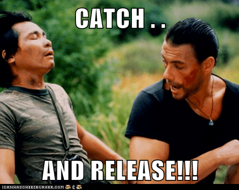 catch and release movie
