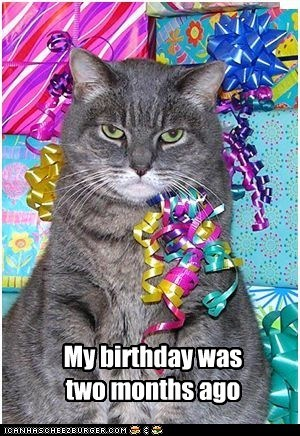 belated birthday captions Cats celebrate Party - 6579859968