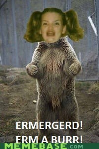 bear,Ermahgerd,woods