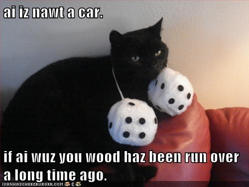 captions,car,Cats,dice,fuzzy dice,rearview mirror