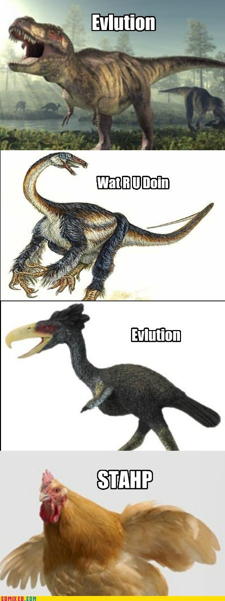 bird,chickens,Darwin,dinosaurs,staph
