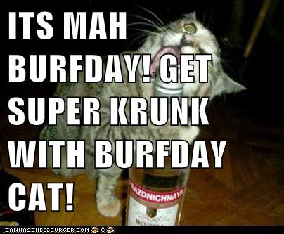 Its Mah Burfday Get Super Krunk With Burfday Cat Lolcats Lol