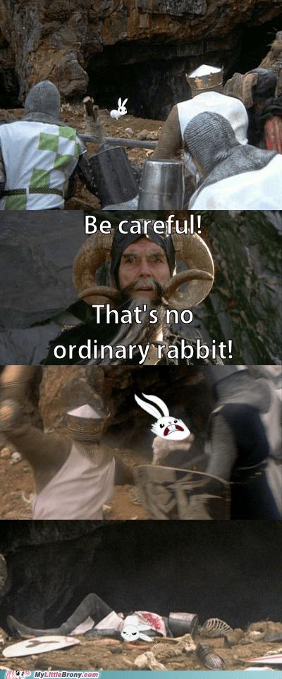 angel bunny deadly monty python salaaaaad - 6580656384