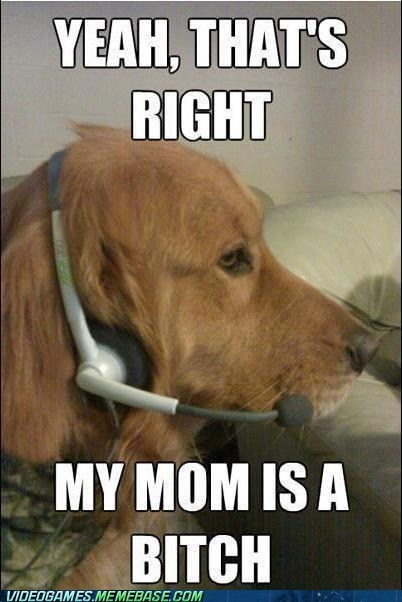 dogs immature gamers microphone xbox - 6580666112
