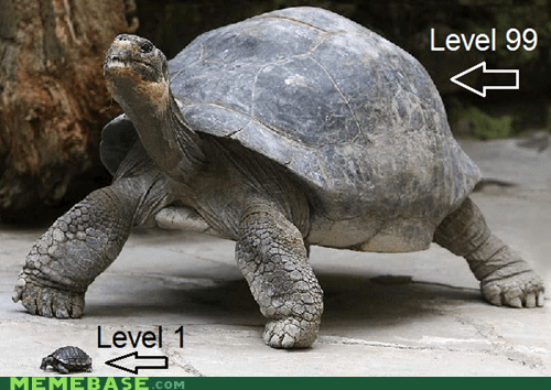 Pokémon,level 99,level 1,turtles