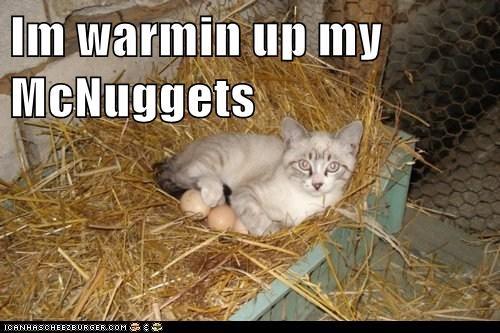 Cheezburger Image 6580771840