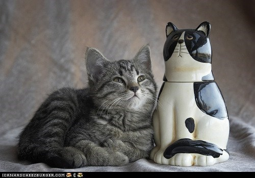 Cats,cookie jars,cyoot kitteh of teh day,kitten,resemblance,statues