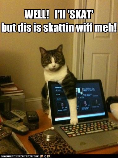 WELL! I'll 'SKAT' but dis is skattin wiff meh!