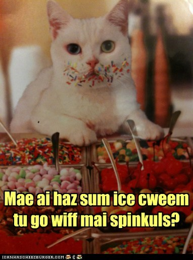 captions Cats ice cream jimmies messy sprinkles - 6581116928
