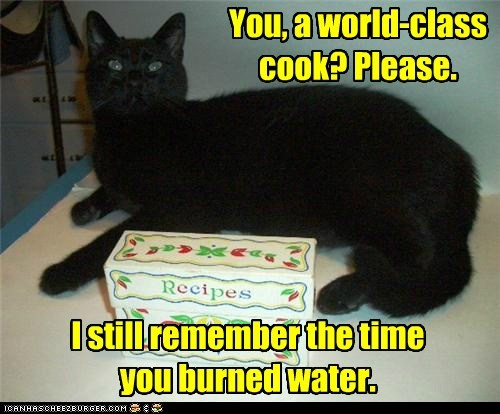 burn captions Cats chef cook FAIL food water - 6581286400