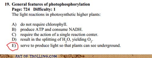 plants test truancy story