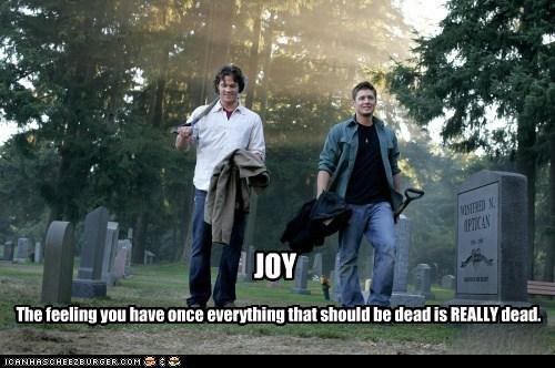 Supernatural Joy feeling sam winchester dean winchester jensen ackles Jared Padalecki dead cemetary - 6581659136