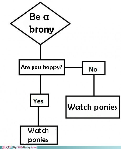 brony,watch ponies