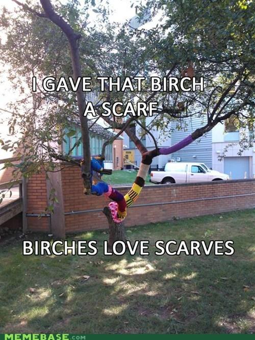tree Ladies Love scarves birches - 6582188032