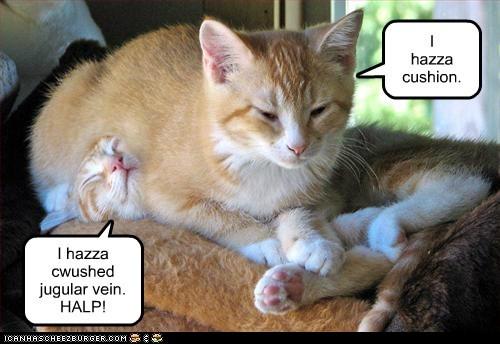 breathe captions Cats cushion happy jugular lay on vein - 6582464256