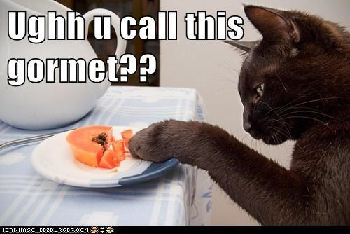 captions,Cats,cuisine,ew,fancy,food,gourmet,gross,melon