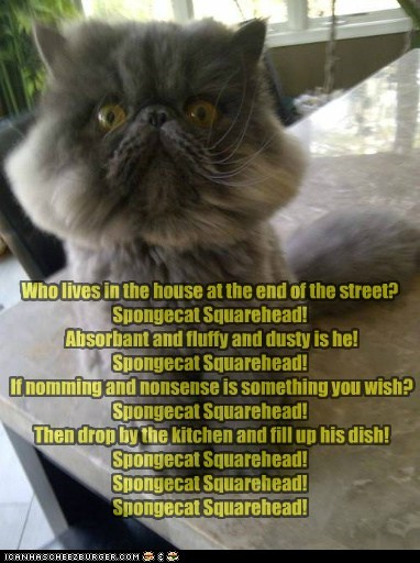 captions,Cats,parody,song,SpongeBob SquarePants