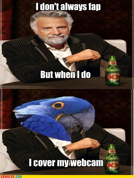 faptimes,Paranoid Parrot,the most interesting man in the world,webcam