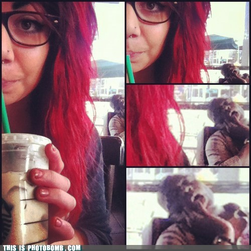 asleep hipster Starbucks