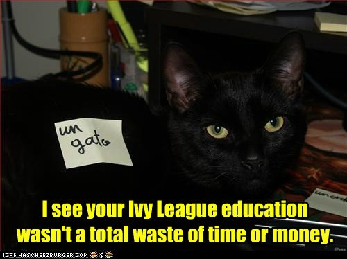 waste,money,Ivy League,smart,intelligence,university,Cats,captions