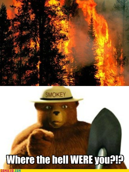 forest fires one job only you Smokey the Bear