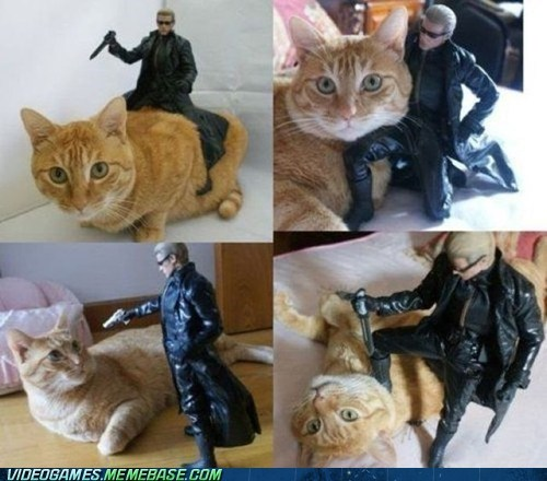 albert wesker collectible lolcat resident evil