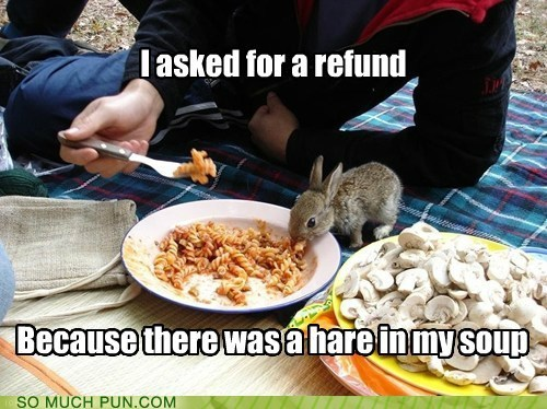 bad pun is bad,hair,hare,homophone,meal,Obligatory,refund