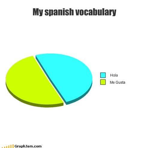 me gusta Pie Chart spanish vocab - 6585214208