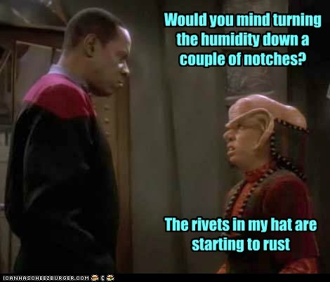ferengi Deep Space Nine Star Trek avery brooks captain sisko humidity rust rivets