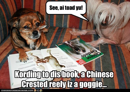 Kording to dis book, a Chinese Crested reely iz a goggie... See, ai toad yu!