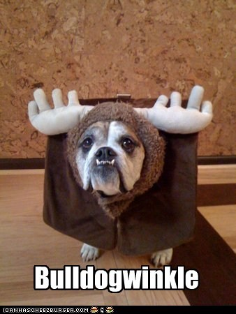 costume dogs bulldog Rocky and Bulwinkle moose bulwinkle - 6586158848