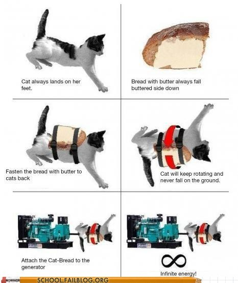 bread,cat,energy,How Does It Work,infinite