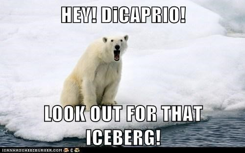 polar bear calling warning leonardo dicaprio iceberg titanic look out - 6586363136