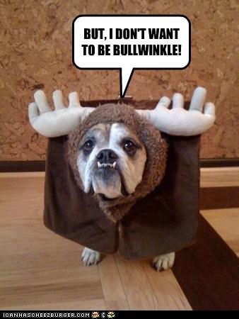 costume dogs halloween bulldog Rocky and Bulwinkle moose - 6586604032