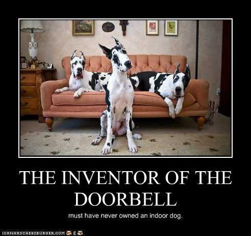THE INVENTOR OF THE DOORBELL must have never owned an indoor dog.