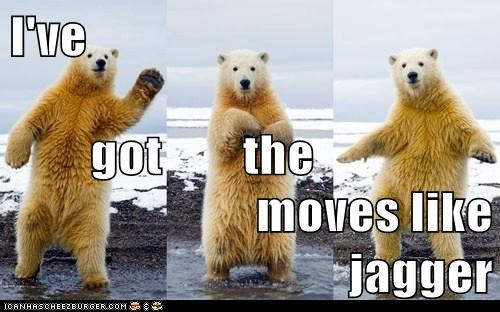 polar bear,moves like jagger,song,maroon 5,dance