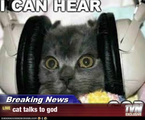 Breaking News - cat talks to god